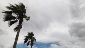 埼玉県の台風19号では記録的な大雨となり、死者4人、負傷者33人、住家被害7,000棟以上の甚大な被害が発生しました。